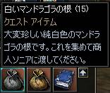 20050705-4.JPG