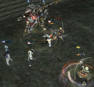 20051203-4.jpg