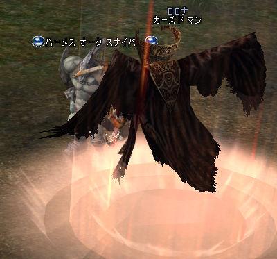 20070205-2.jpg
