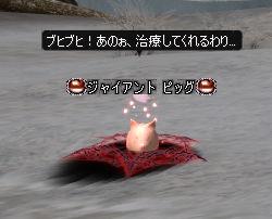 20070423-2.jpg