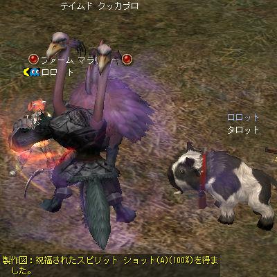 20080608-4.jpg