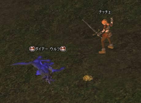 Shot00534.JPG