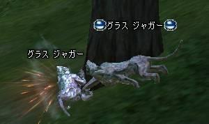 Shot00916.JPG