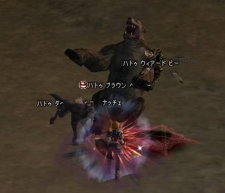 Shot01573.JPG