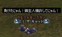 a9.jpg
